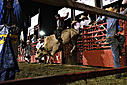 Blue Ridge Rodeo by todd7500 in Member Albums