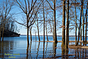 Kentucky Lake by Robin W in Member Albums