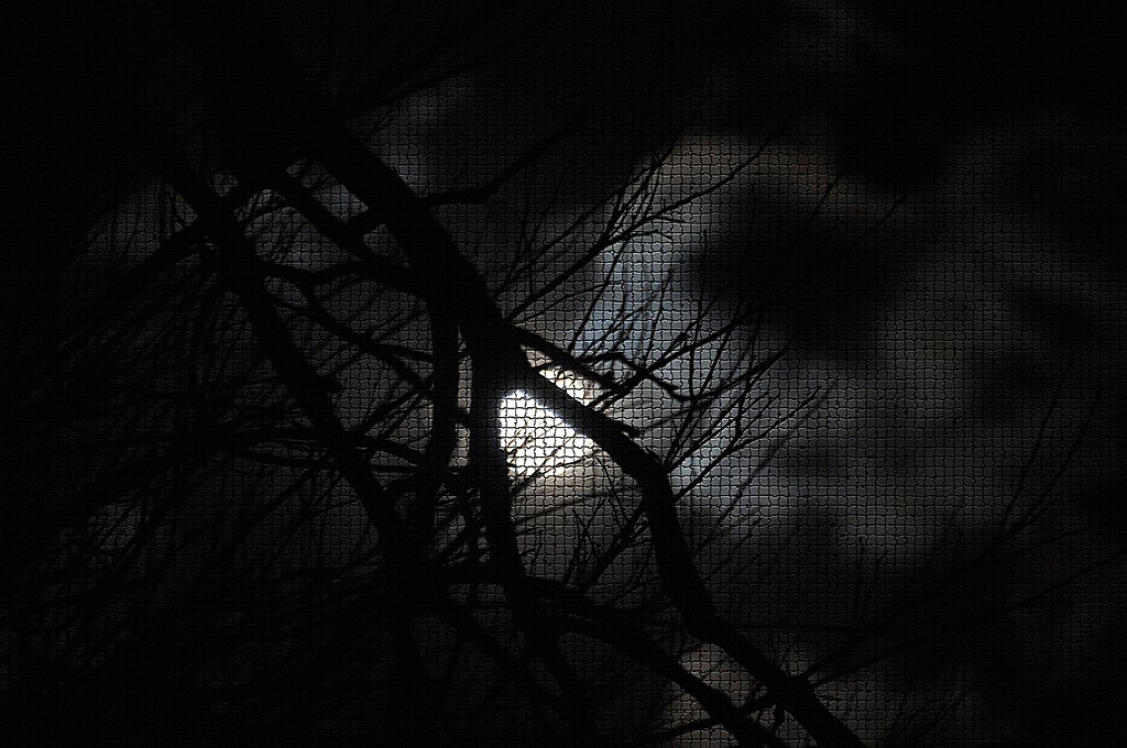D90 moonrise - matte fx by PS by Niffty850 in Member Albums