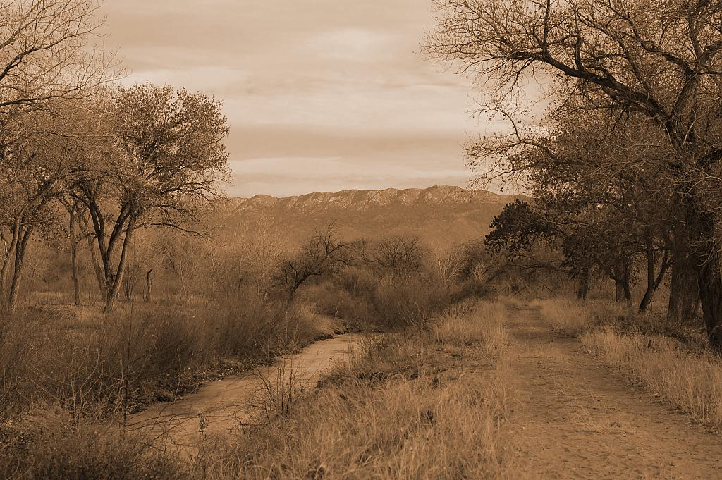 The road by sepia princess in Member Albums