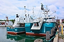 Seen at the Portland Maine Fish Pier June 15, 2014 by JohnFrench in Member Albums