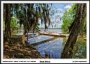 Boat Dock at Cooters Pond by Don Kuykendall in Member Albums