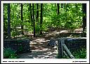 A walk in the woods by Don Kuykendall in Member Albums