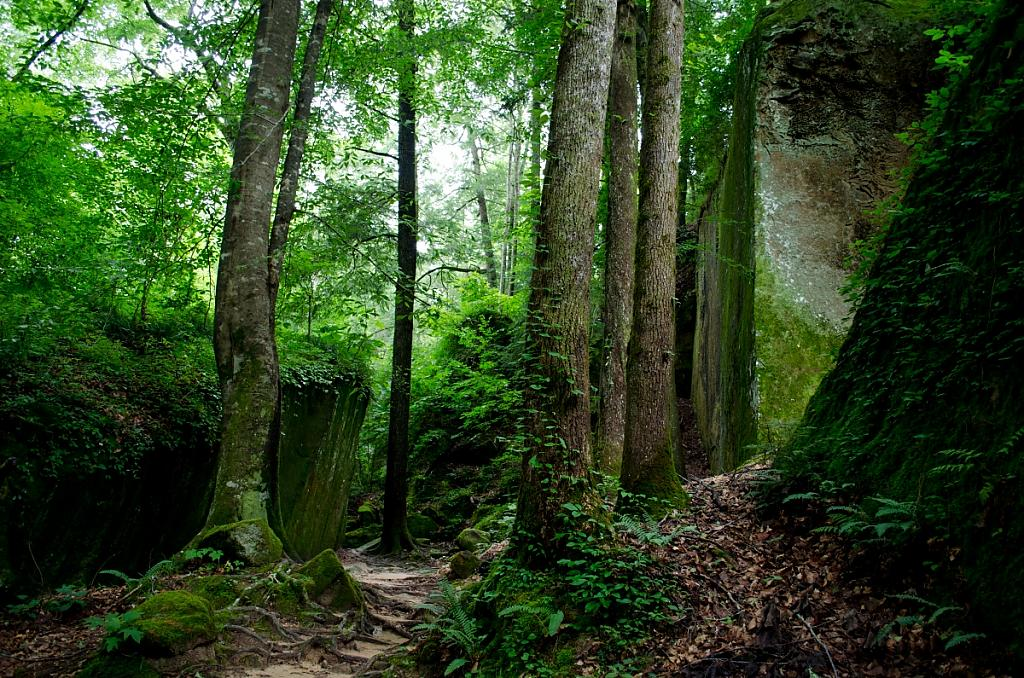 Natural Bridge by Don Kuykendall in Member Albums