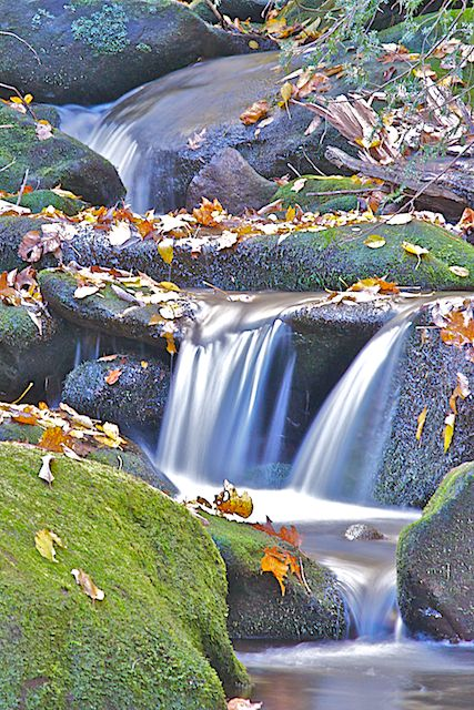 Water Fall, Roaring Fork Motor Nature Trail by Joseph Bautsch in Member Albums