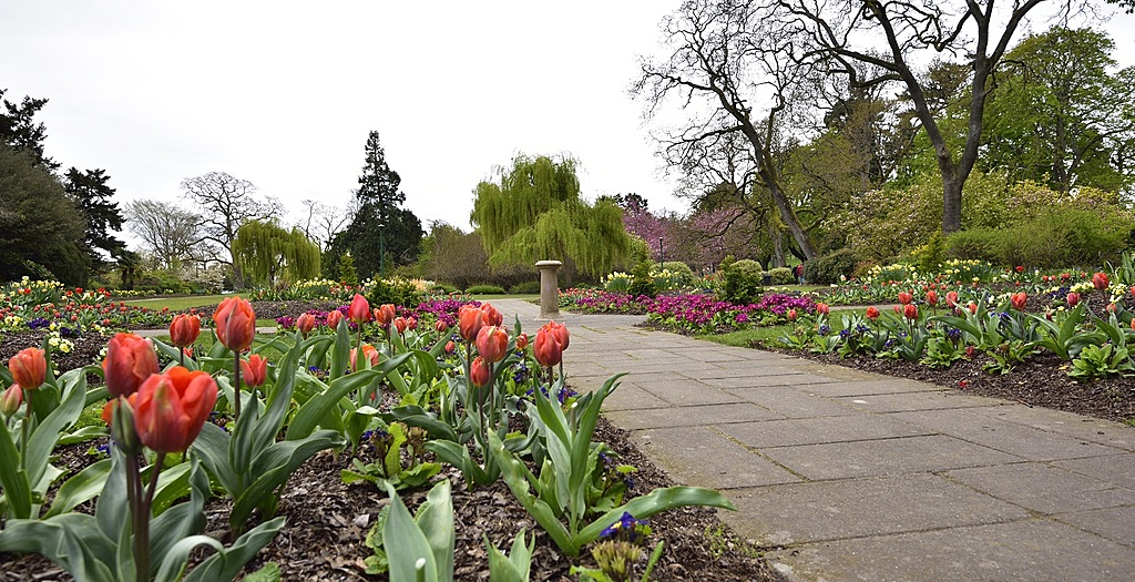 Beacon Hill Park by TieuNgao in Member Albums