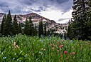 albion basin 2 by ssnidey in Member Albums