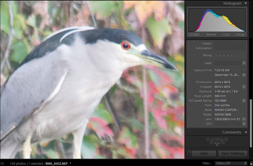 High ISO comparisons by PapaST in Member Albums