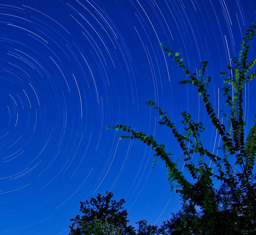 Star Trails by PapaST in Member Albums