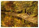 Autumn Along the Canal by RTaylor in Member Albums