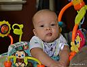 grandson by ladyknight33 in Member Albums
