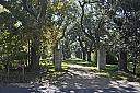 A Southern Driveway by grandpaw in Member Albums