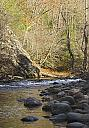 Shot near Cades Cove in Tn. by grandpaw in Member Albums