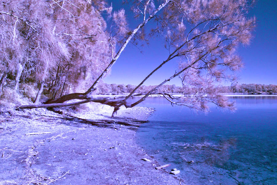 Infrared Saltwater Lagoon by pedroj in Member Albums