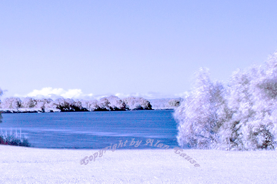 Infrared Manning River by pedroj in Member Albums