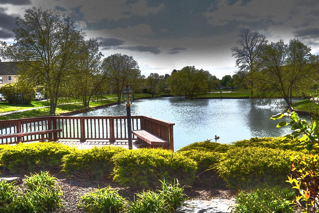 The pond by Shirleyann in Member Albums
