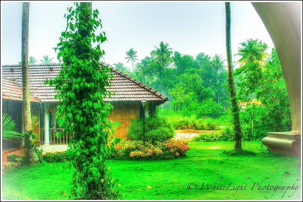 Alleppey 3 by WhiteLight in Member Albums