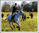 The Boxing Day hunt by Iansky in The Hunt 2017