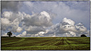 Lines and clouds by Iansky in Member Albums